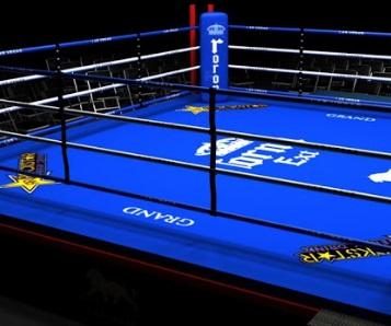 Pulev - Fury on box night